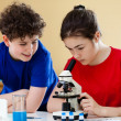 Girl and boy examining preparation under the microscope — Stock Photo