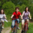 Постер, плакат: Active family biking