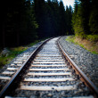 Railroad Tracks — Stock Photo #33318259