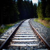 Railroad Tracks — Foto de Stock