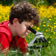 Boy using microscope outdoor — Foto Stock