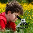 Boy using microscope outdoor — Foto de Stock