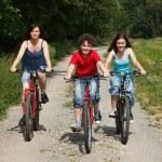 アクティブな家族の自転車に乗ること — ストック写真