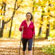stavgångpro nordic walking — Stockfoto #33604753