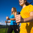 Nordic walking — Stock Photo #33760275