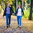 Young couple walking in park — Stock Photo #50531649