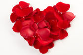 Heart from rose petals — Stock Photo