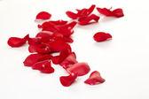 Fundo de pétalas de rosa — Foto Stock