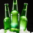 Beer bottles in snow — Stock Photo