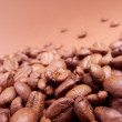 coffee beans — Stock Photo #30693109