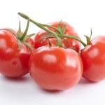 Fresh tomatoes — Stock Photo #30701567