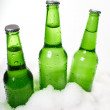 Stock Photo: Beer bottles in snow