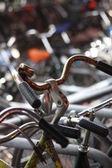 Bike parking — Stock Photo