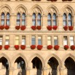 Famous City Hall building, Rathaus in Vienna, Austria — Stock Photo #13283974