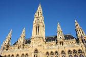 Rathaus, viyana, avusturya — Stok fotoğraf