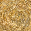 Detials close up shot of Wheat Haystack in farmer field — Stock Photo