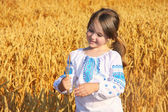Small rural girl on wheat field — Stock Photo