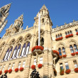 Rathaus in Vienna, Austria — Stock Photo