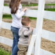 Pre-teen girl and Baby boy on the a white picket fence beside th — Stock Photo