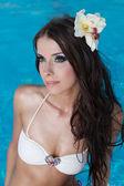 The beautiful girl in pool — Stock Photo