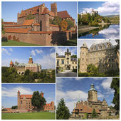Collage of the most famous castles in Poland — Stock Photo