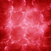 Romantic background with roses — Stock Photo