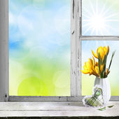 Spring flowers lawn and green trees seen through the old window. — Stock Photo