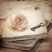 Pink rose on an old book (vintage) — Stock Photo
