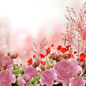 Pink roses bouquet with free space for text — Stock Photo