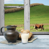 Countryside view of the meadow and a cow — Stock Photo