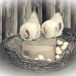 Chickens and eggs in the nest. Easter card — Stock Photo