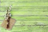 Ramitas de sauce sobre fondo de madera — Foto de Stock