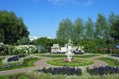 Peterhof, a flower bed at on Czarina — Stock Photo