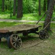 Vintage peasant cart in Park — Stock Photo #27418681