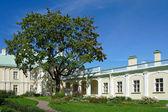 Oranienbaum, Grand Palace — Zdjęcie stockowe