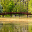 Footbridge in the Park — Foto de Stock