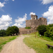 Castle ruins — Stock Photo #27740875