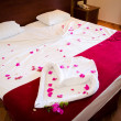 Bed of Red Roses — Foto Stock