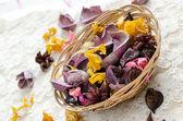 Dried aromatic plants — Stock Photo