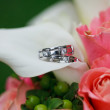 Stock Photo: Wedding rings on flowers