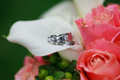 Anelli di nozze sui fiori — Foto Stock