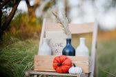 Harvested pumpkins decorate — Stock Photo