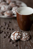 Chocolate cookies — Stockfoto