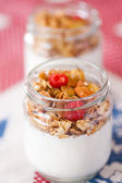 Delicious and healthy yogurt with granola — Стоковое фото