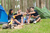 Friends camping — Stock Photo