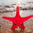 Stock Photo: Red star
