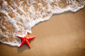 Sandy background with starfish — Stockfoto