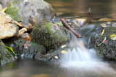 Fresh water spring — Stock Photo