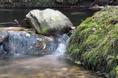 Creek moss and stones — Stock Photo
