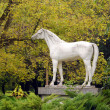 White horse statue — Stock Photo